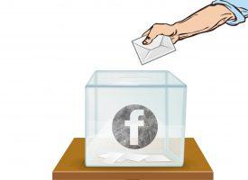 Facebook erstatter demokratisk proces