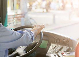 Misforstået nazisme hersker blandt heilende buschauffører