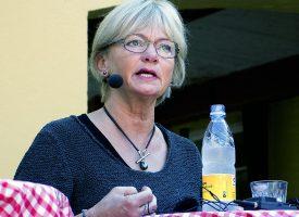 Pia Kjærsgaard taber i gemmeleg