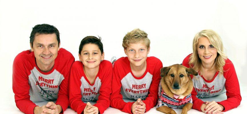 Dansk Kennelklub kræver pasningsgaranti