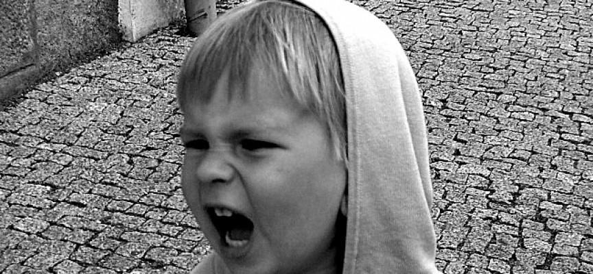 Uopdragen 5-årig står bag populær blog