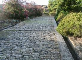 Vej, der ikke fører til Rom, fundet nær Slagelse