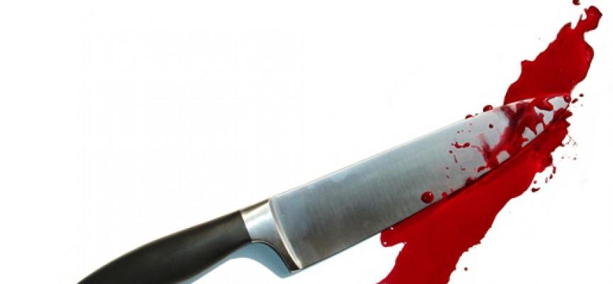 Krarup og Rothstein enige: Hård tone er morderisk voldsterror