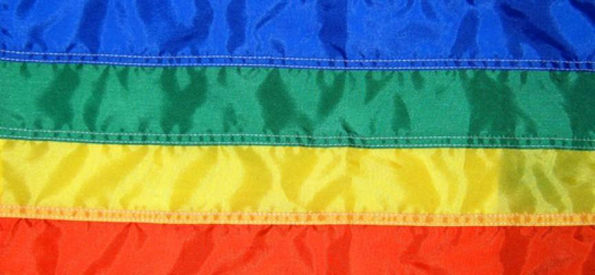 Leder: Stop de homofiles aggressive regnbuer!