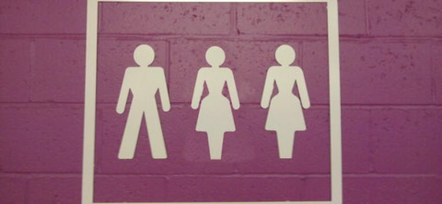 Projekt Delemand letter danske kvinders hverdag