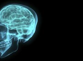 Intelligens fundet i mandehjerne