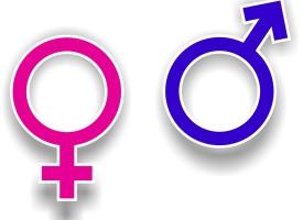 KVINFO kritiserer sig selv: Alle vores direktører har været kvinder