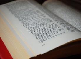 Sprogpolitiet overvejer barmhjertighedsprincip