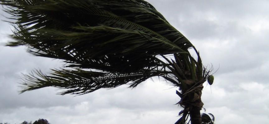 Klimaskeptikere: Vejret har en venstreorienteret slagside