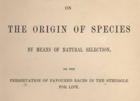 Chok: Kun få evolutionstilhængere har læst Om Arternes Oprindelse