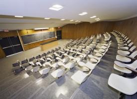 DF indfører særlov mod socialkonstruktivisme