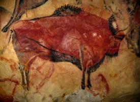 Nye tilfælde af graffitihærværk i Chauvetgrotten (fra arkivet, år 31.000 f.v.t.)