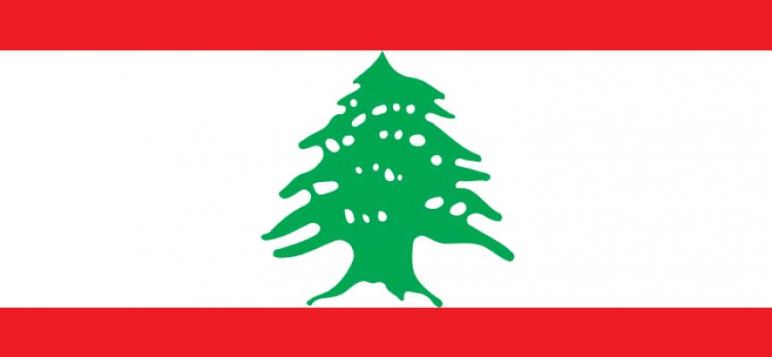 Libanesere trætte af dansk indenrigspolitik