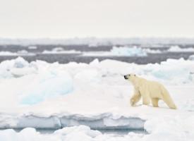 Verdensledere: Nu skal vi altså virkelig gøre noget ved de klimaforandringer (fra fremtidsarkivet, 2053)