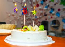 Williams børnefødselsdag afsløret som EU-konference om korneksport