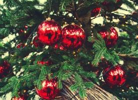 Guide: Sådan holder du jul uden Jesus