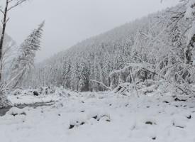 Marie Krarup: Sibirisk kulde er NATOs skyld