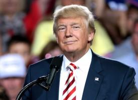 Donald Trump laver ikke pinligt optrin ved møde med udenlandsk statsleder