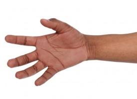 Rokoko Classic: RokokoGuide: Fem fingre, som kan bruges til næsten alt