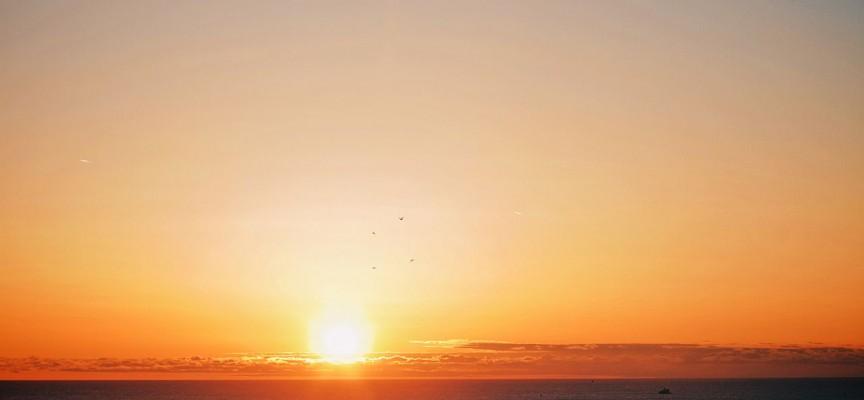 Donald Trump fremsætter kontroversiel påstand om solopgang i øst