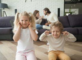 S og DF: Tvunget ophold i sommerhus, hvis par nægter skilsmisserådgivning