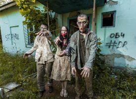 Ekspert i biodiversitet: Frygt ikke zombierne i Jylland