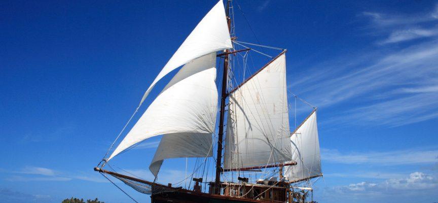 Alternativet: Containerskibe skal erstattes af store træskibe, der drives frem ved vindens kraft