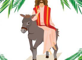 Mand falder på æsel efter hærværk med palmeblade (fra arkivet, år 33)