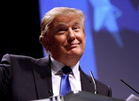 Satirikere giver op efter Trump-aflysning