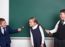 Elever afviser mobbeanklager: Vi har bare en direkte tone