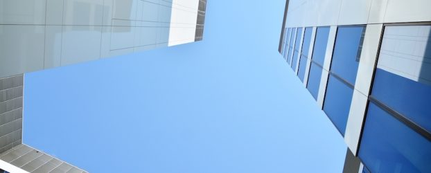 Arkitekter jubler: Skal bygge by uden mennesker