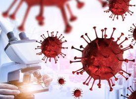 Muteret Aarhus-virus får navnet Covid-Nitt1