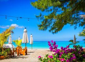 Rokoko Classic: Eneste hæderlige virksomhedsejer på Caymanøerne er lidt træt af det hele