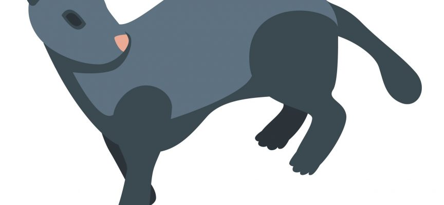 Ny Noma-delikatesse: Fermenteret mink