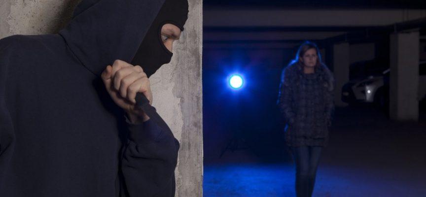Amnesty har succes med omskoling af stalkere: Nu er Janus en dygtig facer