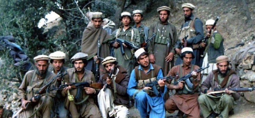 Taliban lover hurtig, individuel behandling af danske tolke